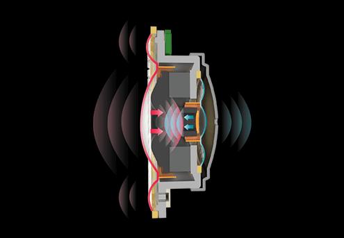 vellichor In-C1 Trusonus